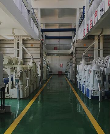 Rice Mill Engineering
