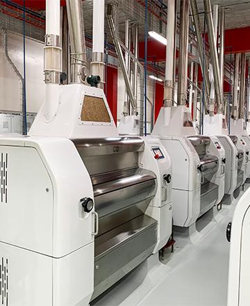Flour Mill Engineering